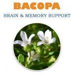 BACOPA1