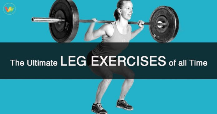 Best Leg Workouts