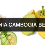 Garcinia Uses – All That You Need Know About Garcinia Cambogia Fruit-min