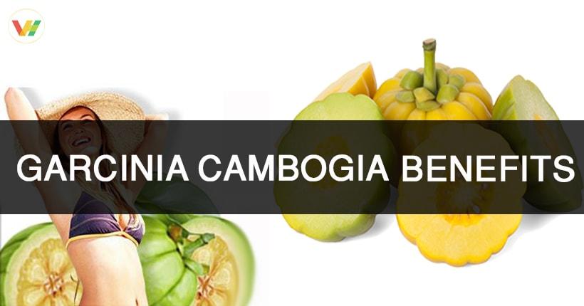 garcinia uses